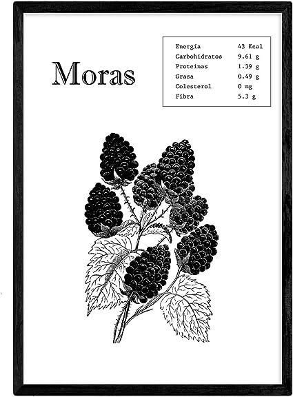 Nacnic Poster de Moras. Láminas de frutas y verduras. Tamaño A3