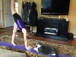 Amazon Com Z Athletic Gymnastics Folding Training Low