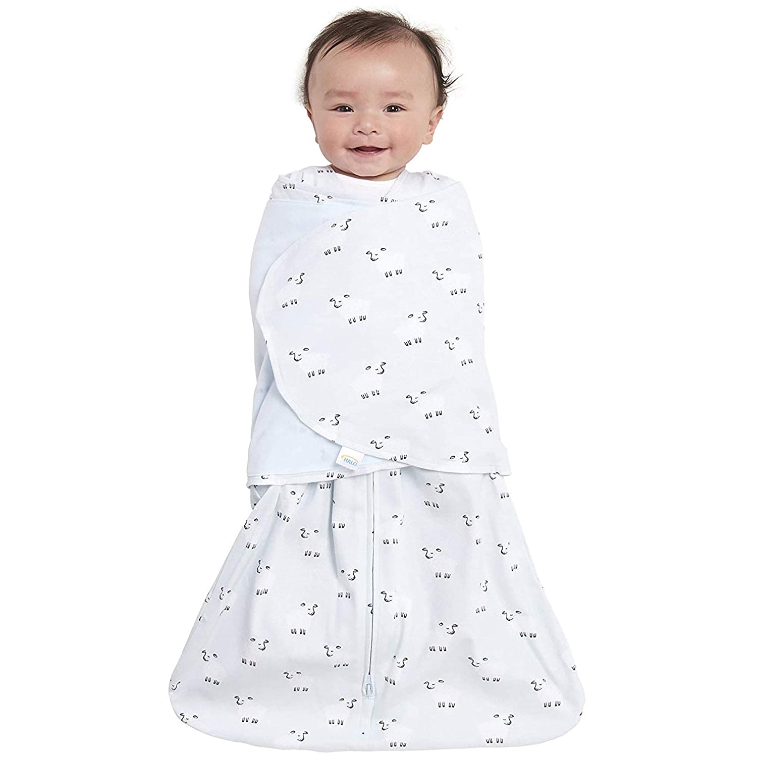 Baby in a Swaddle Blanket