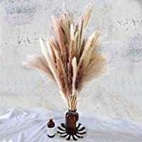 Total 60 Pcs | 15 Pcs White Pampas & 15 Pcs Brown Pampas & 30 Pcs Reed Grass/Natural Dried Pampas Grass for Flower…
