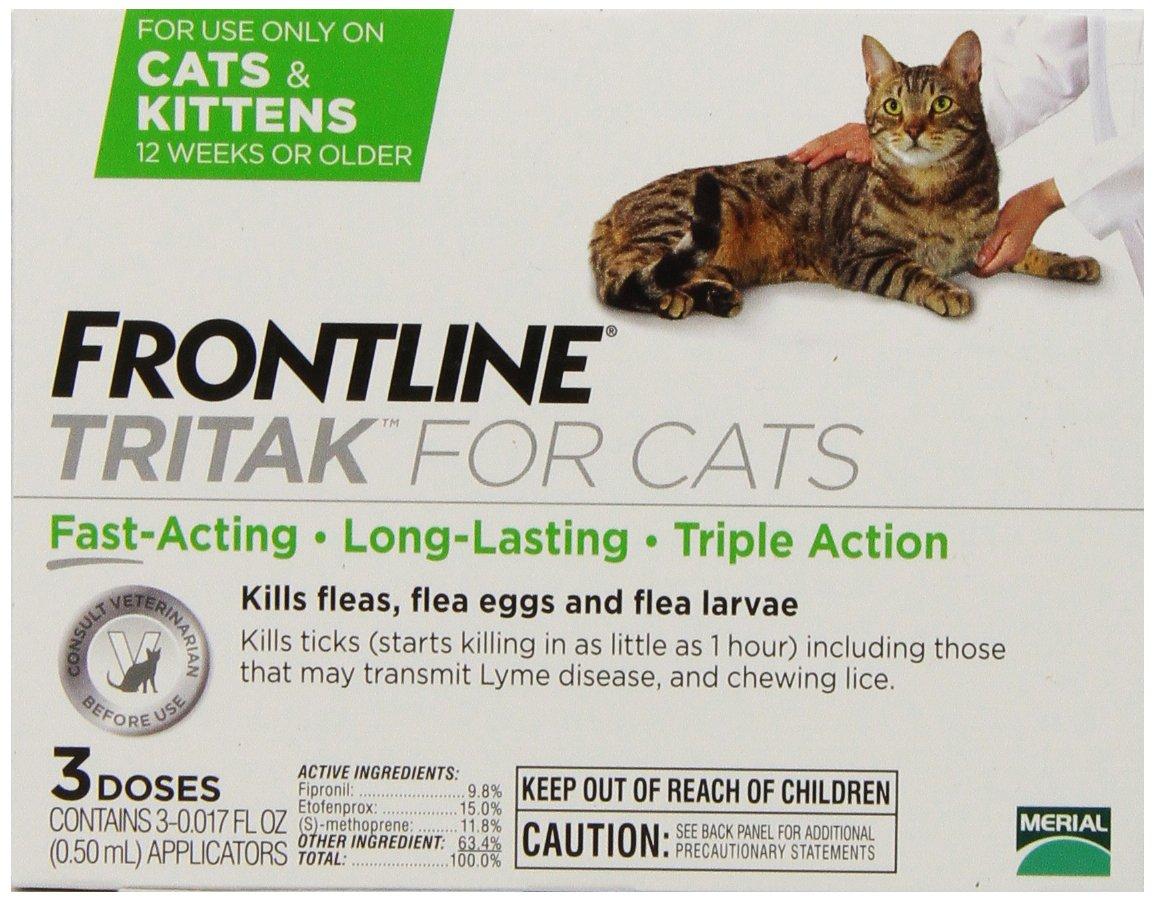 Does Frontline Kill Cat Fleas