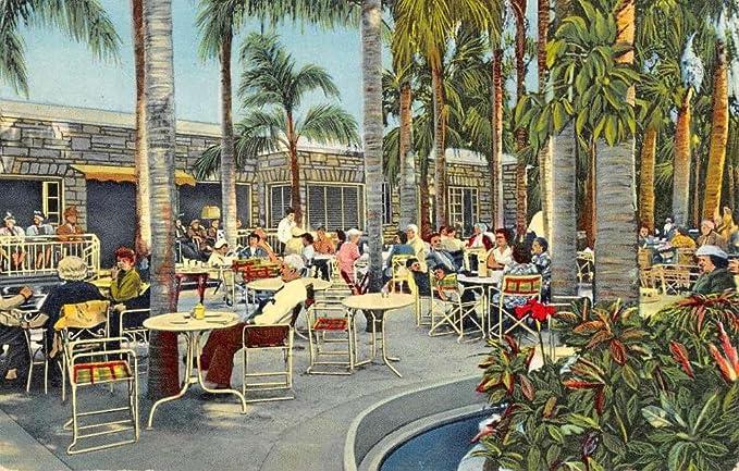 Palm Garden Largo Garden Ftempo