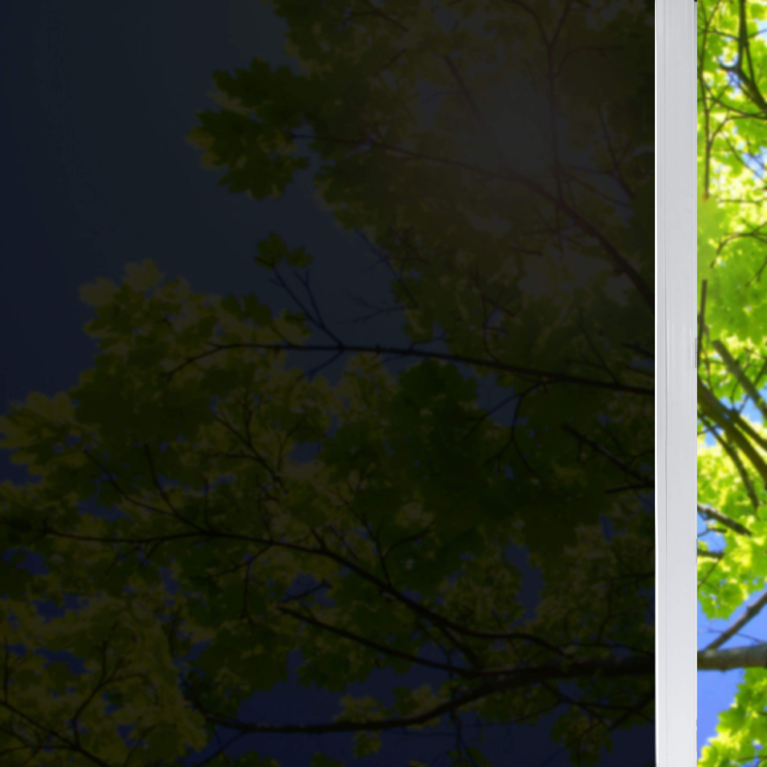 solardiamond Window Film Privacy Heat Control Sun Blocking Insulation Film Decorative Residential UV Protection Window Tint Roll for Glass for Home Meeting Living Room & Car | 5% Dark Black 40inX15ft