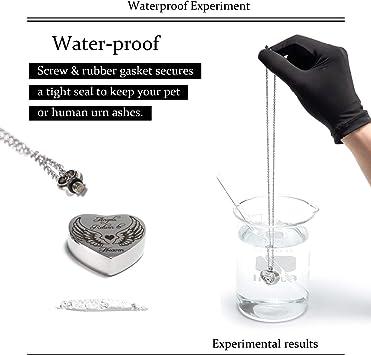 Re-Call Collar con Colgante de urna y Cenizas Seres Queridos y Mascotas: Amazon.es: Productos para mascotas