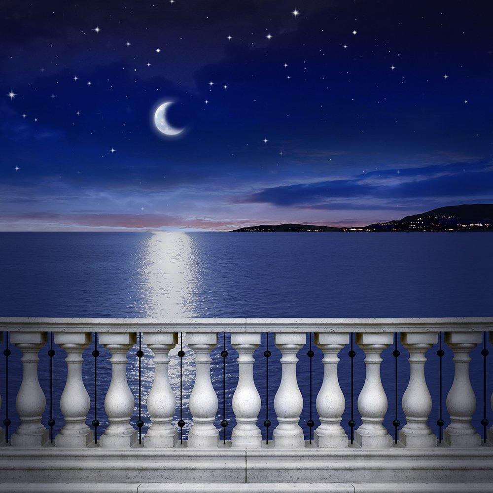 写真バックドロップ – 地中海Moonlight With Balustrade – 10 x 10 ft。 – 高品質シームレスなファブリック   B00OKSNPPU