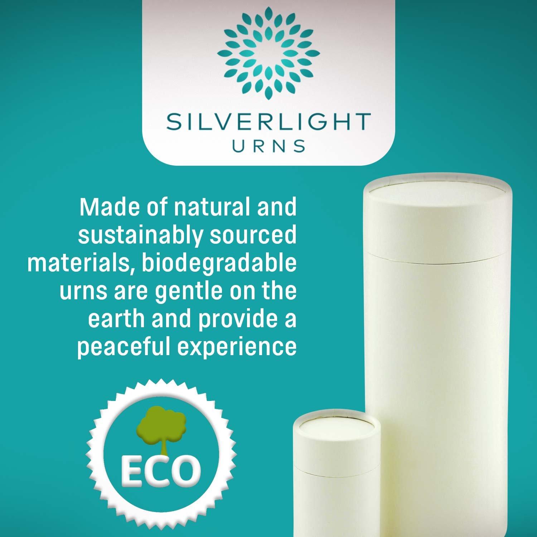 Pasajes internatonal unidad urna Biodegradable para dos, Eco ...