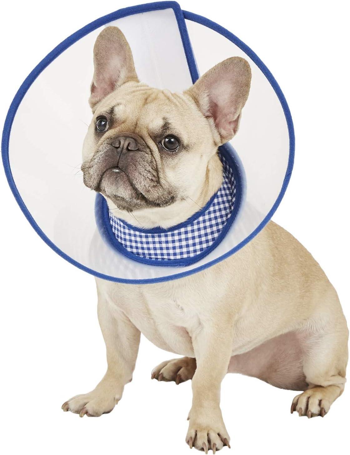 American Staffordshire Bull Terrier Dog Soft Velvet Feel Cushion Co AD-SBT5-CPW