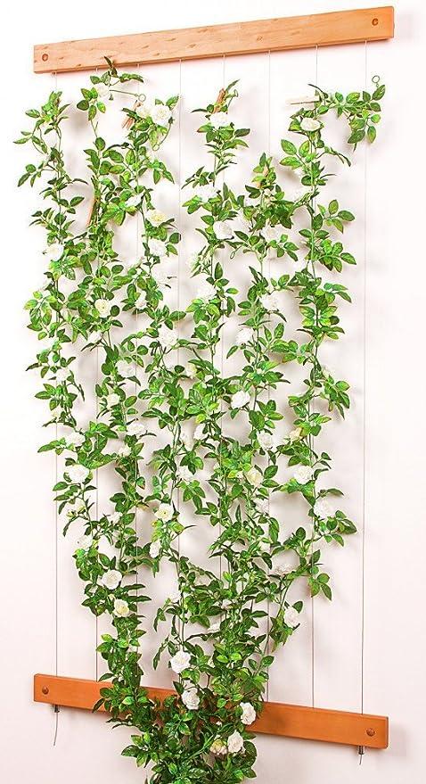 Cuerda escalada pérgola Rank ayuda con listones de madera real madera 80 x 200 cm: Amazon.es: Jardín
