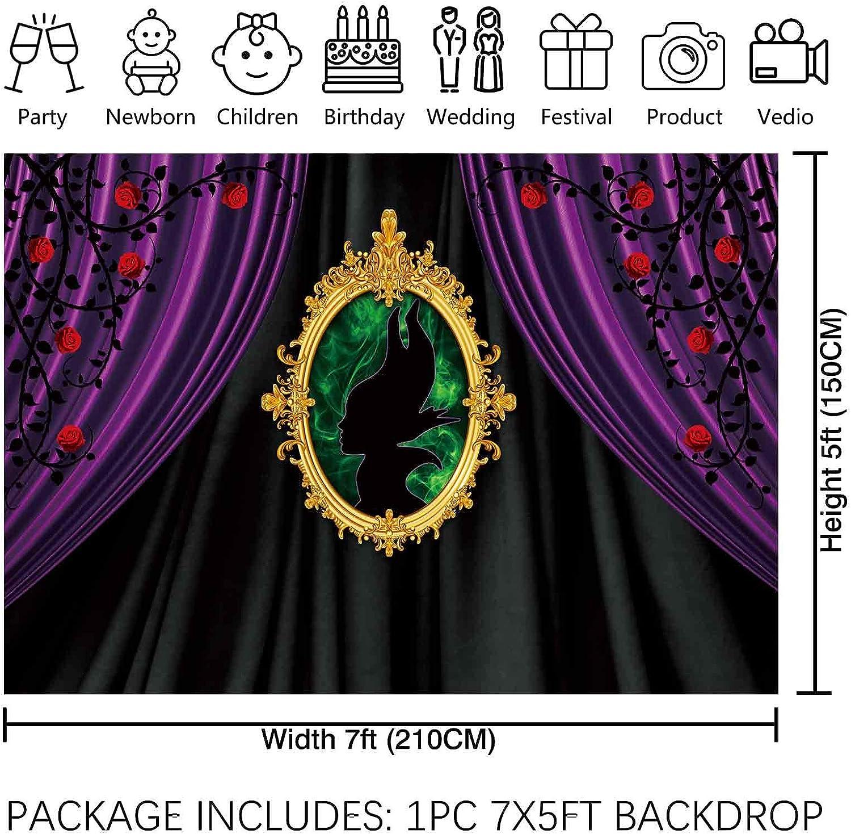 Allenjoy 2 1 X 1 5 M Maleficent Themenparty Hintergrund Kamera