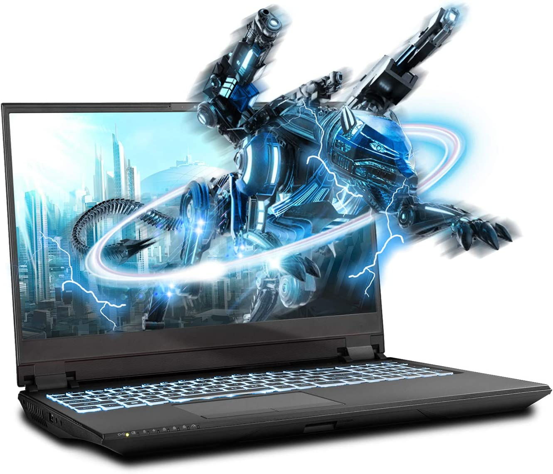 Sager NP8358F2 15.6-Inch FHD 144Hz, 72% NTSC Gaming Laptop, Intel i7-10875H, RTX 2070 Super 8GB, 32GB RAM, 1TB NVMe SSD, Windows 10