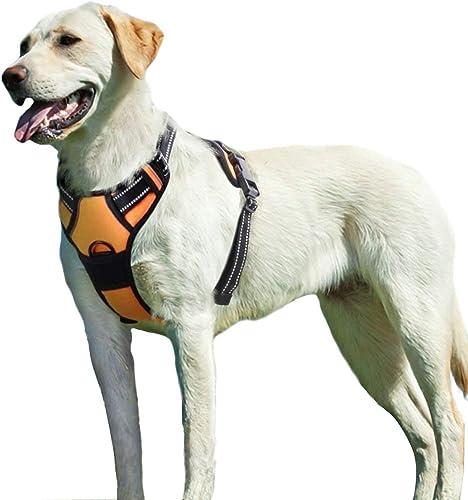 Eagloo-Hundegeschirr-für-Große-Hunde