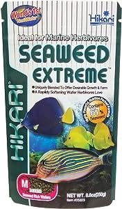Hikari Usa Inc AHK25323 Seaweed extreme 8.8-Ounce