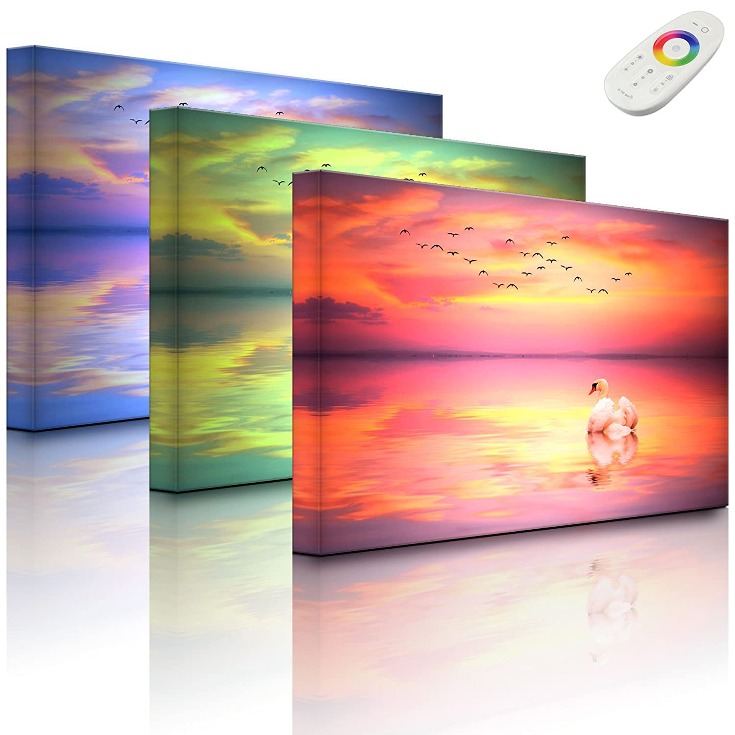 lightbox-multicolor.com LED picture with lighting - swan at sunset - 60 x 40 cm - front lighted Rossteutscher GbR