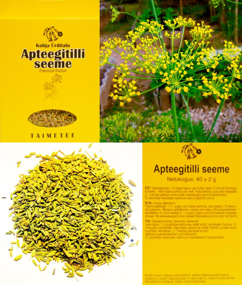 Fennel Seeds Dried 8,46 Oz.(240g.)= 6 Packing x 1.41 Oz.(40g.)