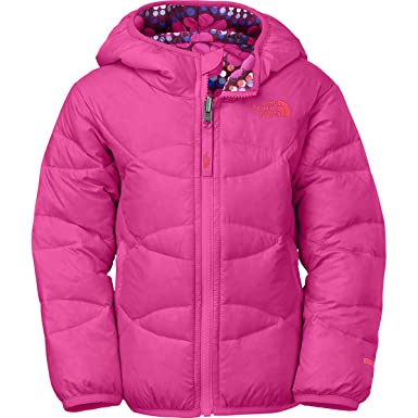 d851ee0466 Image Unavailable. Image not available for. Color  The North Face Kids Girls  Reversible Moondoggy Jacket ...