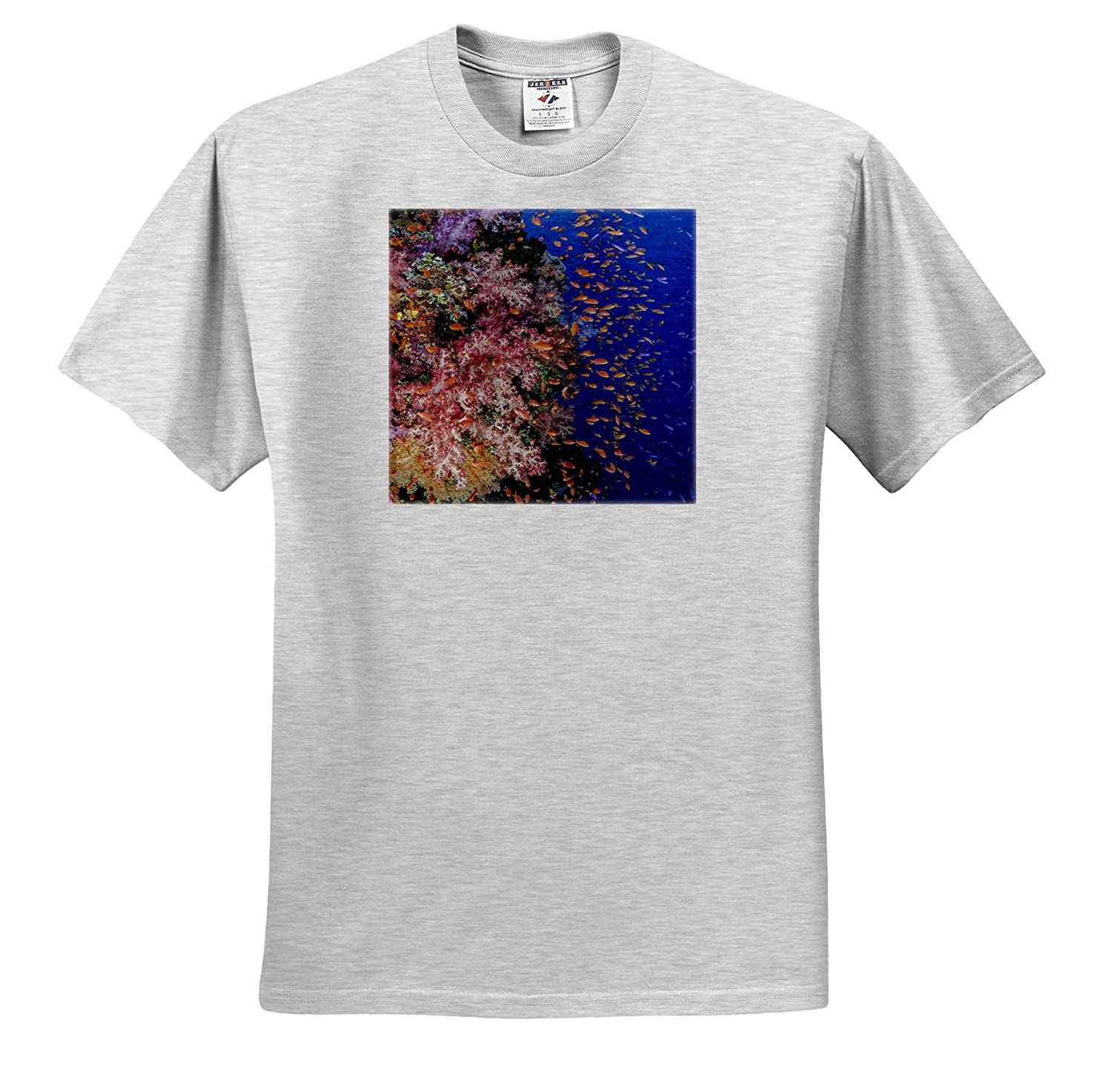 Fiji Underwater - Adult T-Shirt XL 3dRose Danita Delimont Reef with Coral and Anthias ts/_314016