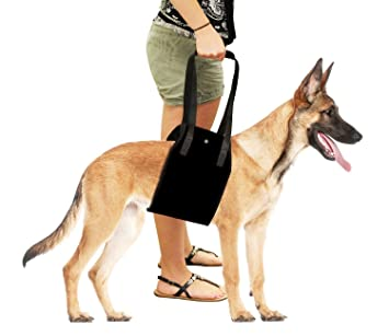 Dog Lift Harness - AntEuro Support Sling Helps Dogs With Weak Legs
