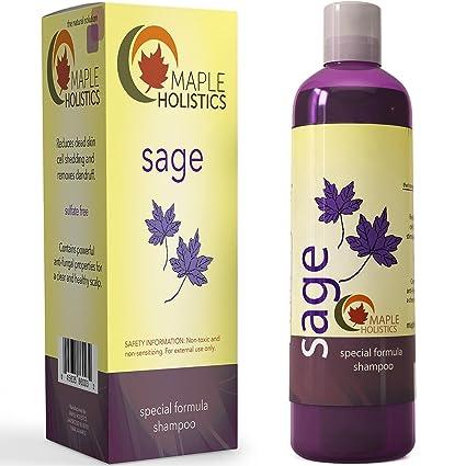 Champú de vitamina para caspa + pérdida de cabello – tratamiento anticaspa libre de sulfato para