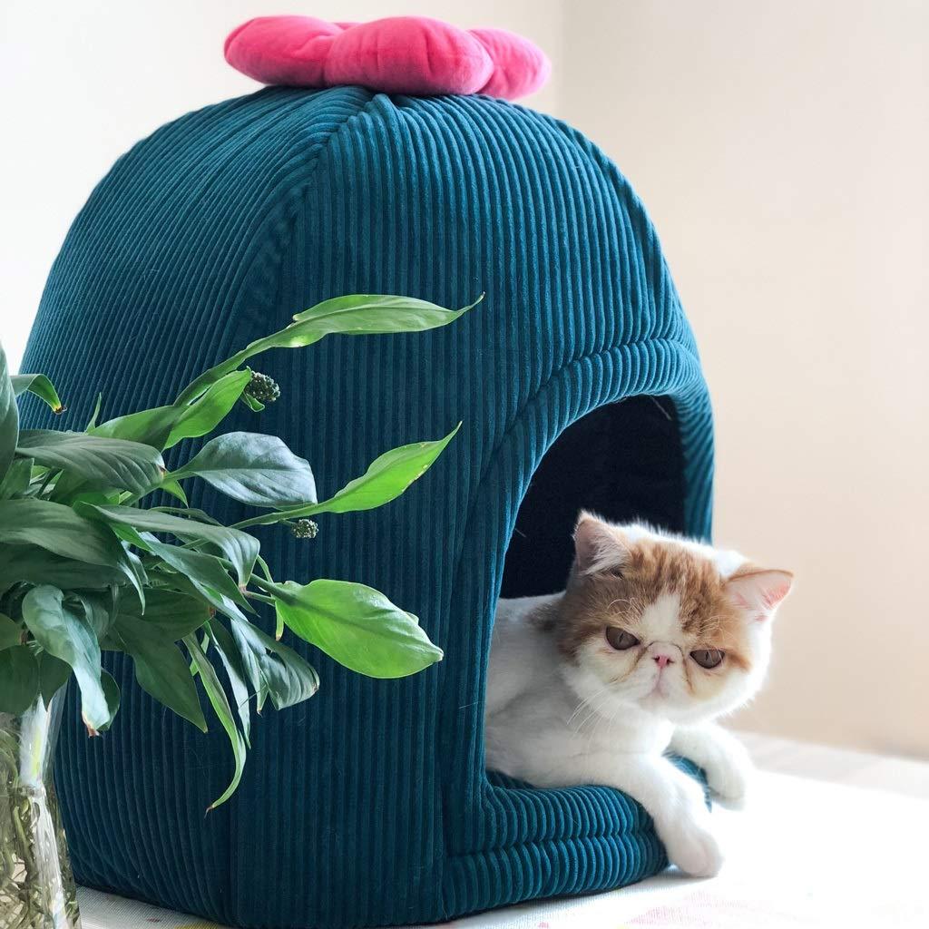 BEIBEI Nido para Mascotas, Camada para Gatos De Cactus ...