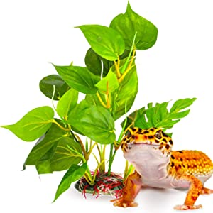 SunGrow Artifical Plant for Reptiles, Large Fake Plant Adds Beauty and Enrichment with Zero Maintenance to Your Vivarium, Create a Jurassic Kingdom, Silk Leaves for Bearded Dragons