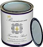 Renaissance Chalk Furniture & Cabinet Paint Qt - Non Toxic,  Superior Coverage - Tranquility (32oz)