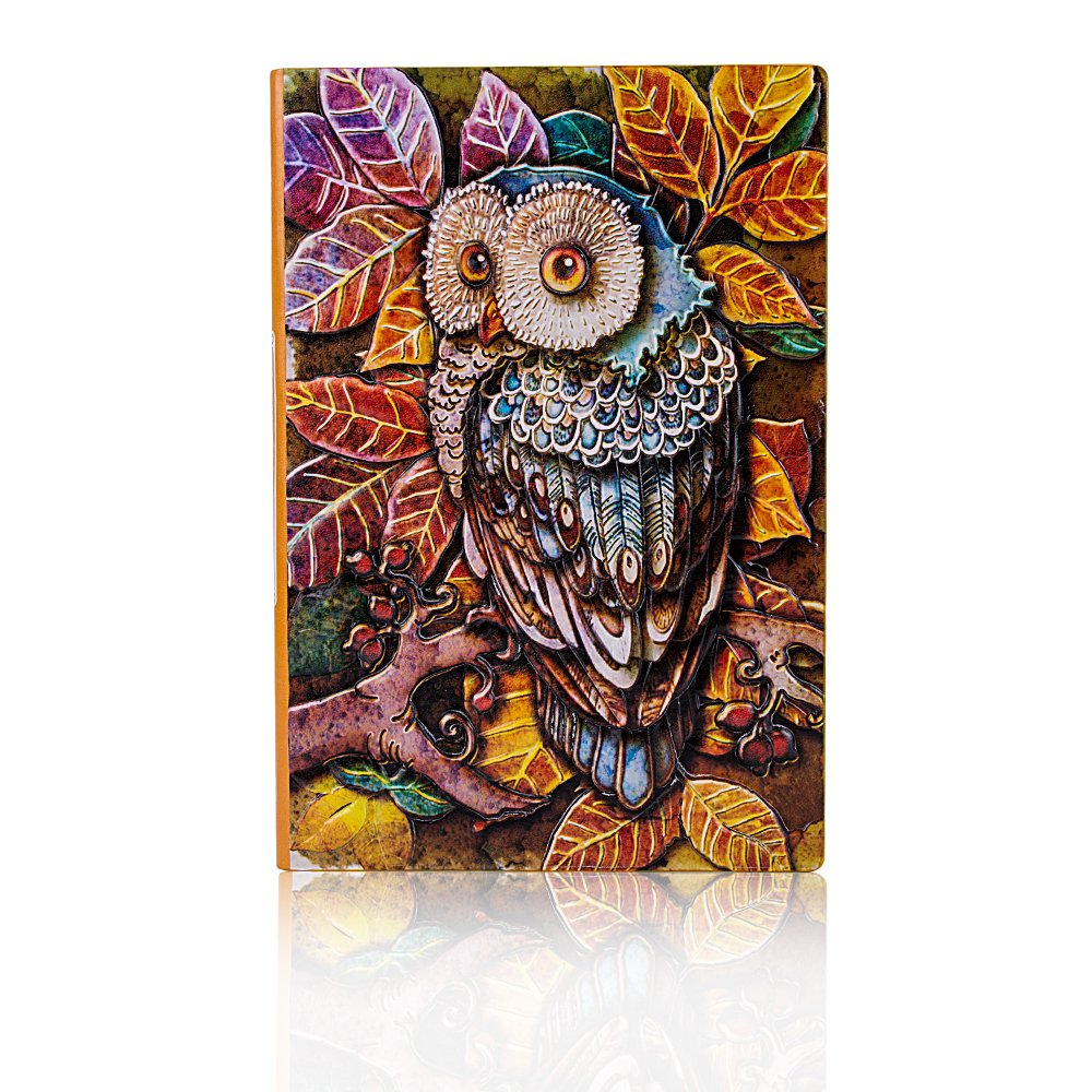 Fronnor Vintage Hardcover Owl Theme Cool Fashion Diary Lined Note Book Creative Notebook School Office Supplies(Colorful Bronze)
