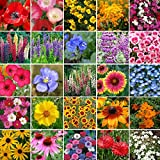 Pacific Northwest Wildflower Seed Mix- 5 Pounds, Bulk, Mixed