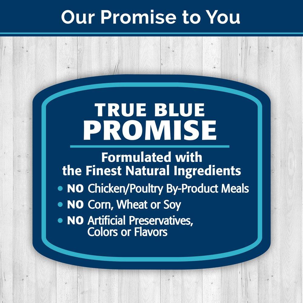 Blue Buffalo Dental Bones Natural Adult Dental Chew Dog Treat, Large 12-oz bag by Blue Buffalo (Image #6)