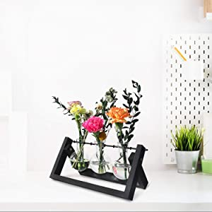 Glass Terrarium Planter, Desktop Glass Planter Bulb Vase with Retro Solid Wooden Stand & Metal Swivel Holder, Rustic Elegant Propagation Station for Garden Home Office Desk Decor (Black 3 Bulb Vase)