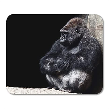 fde558a3be947 Amazon.com : VANKINE Mouse Pads Silver Animal Gorilla Gray ...