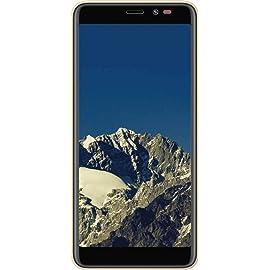 Mobiistar C1 Lite  Gold, 8  GB   1  GB RAM