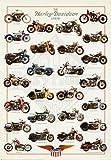 Harley Davidson Legend Poster Print 24x36