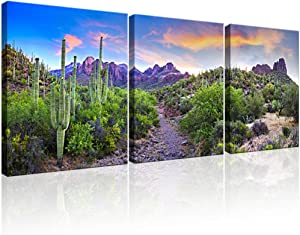 """KLVOS 3 Piece Tropical Plants Canvas Wall Art Saguaros in Sonoran Desert Arizona Picture Print on Canvas Landscape Modern Home Decor Stretched and Framed Ready to Hang - 16""""x20""""x3 Panels"""