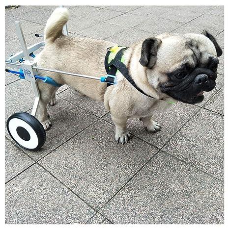 Carrito para Perros, Adecuado para Mascotas, rehabilitación, incapacidad de extremidades, pasear,