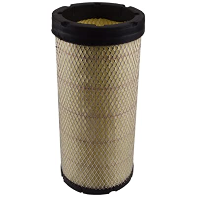 Luber-finer LAF1956 Heavy Duty Air Filter: Automotive