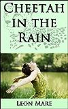 Cheetah in the Rain (Sam Jenkins Trilogy Book 2)