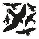 Folienetiketten Warnvögel, schwarz
