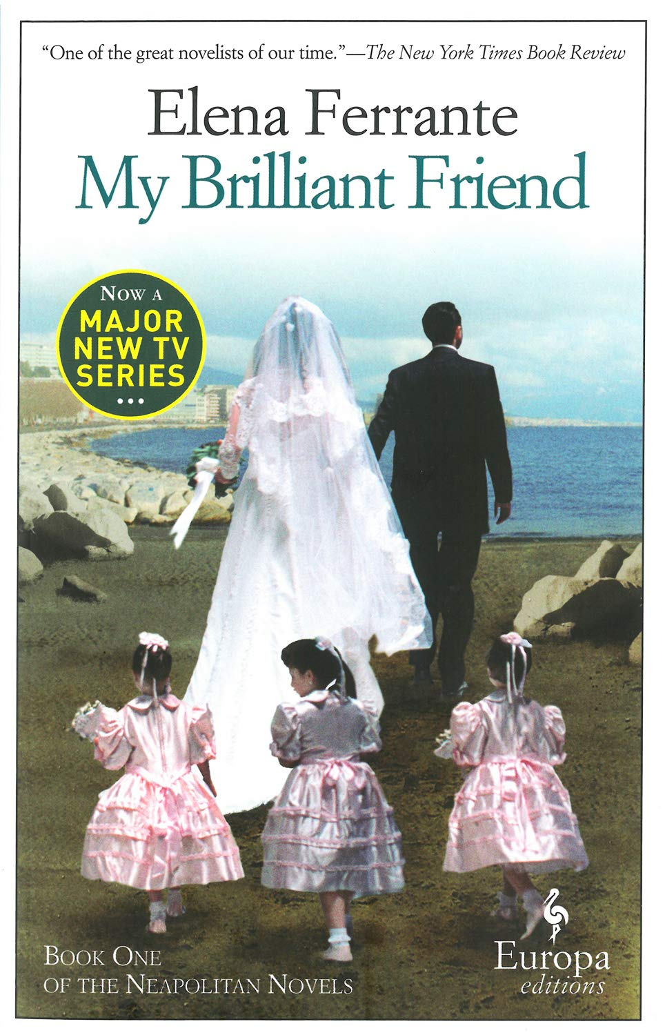 Image result for my brilliant friend cover