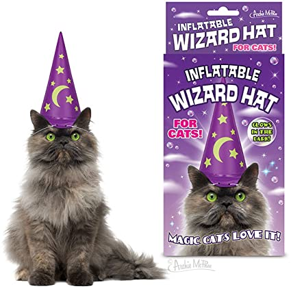 Amazon INFLATABLE WIZARD HAT FOR CATS By Accoutrements Toys Games