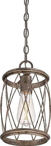 Quoizel RDY1506CS Dury Cage Mini Pendant Lighting, 1-Light, 60 Watts, Century Silver Leaf 11 H x 7 W