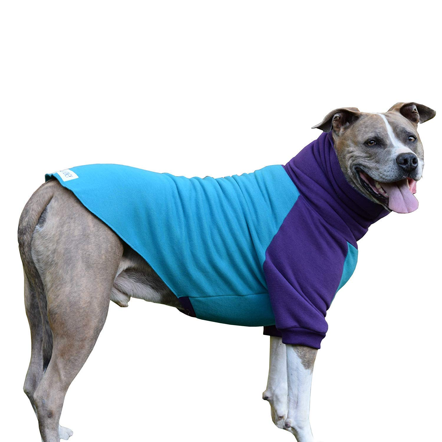 Tooth & Honey Big Dog Sweater/Pitbull/Bully Breed/Colorblock Sweatshirt/Pullover (Extra Large)