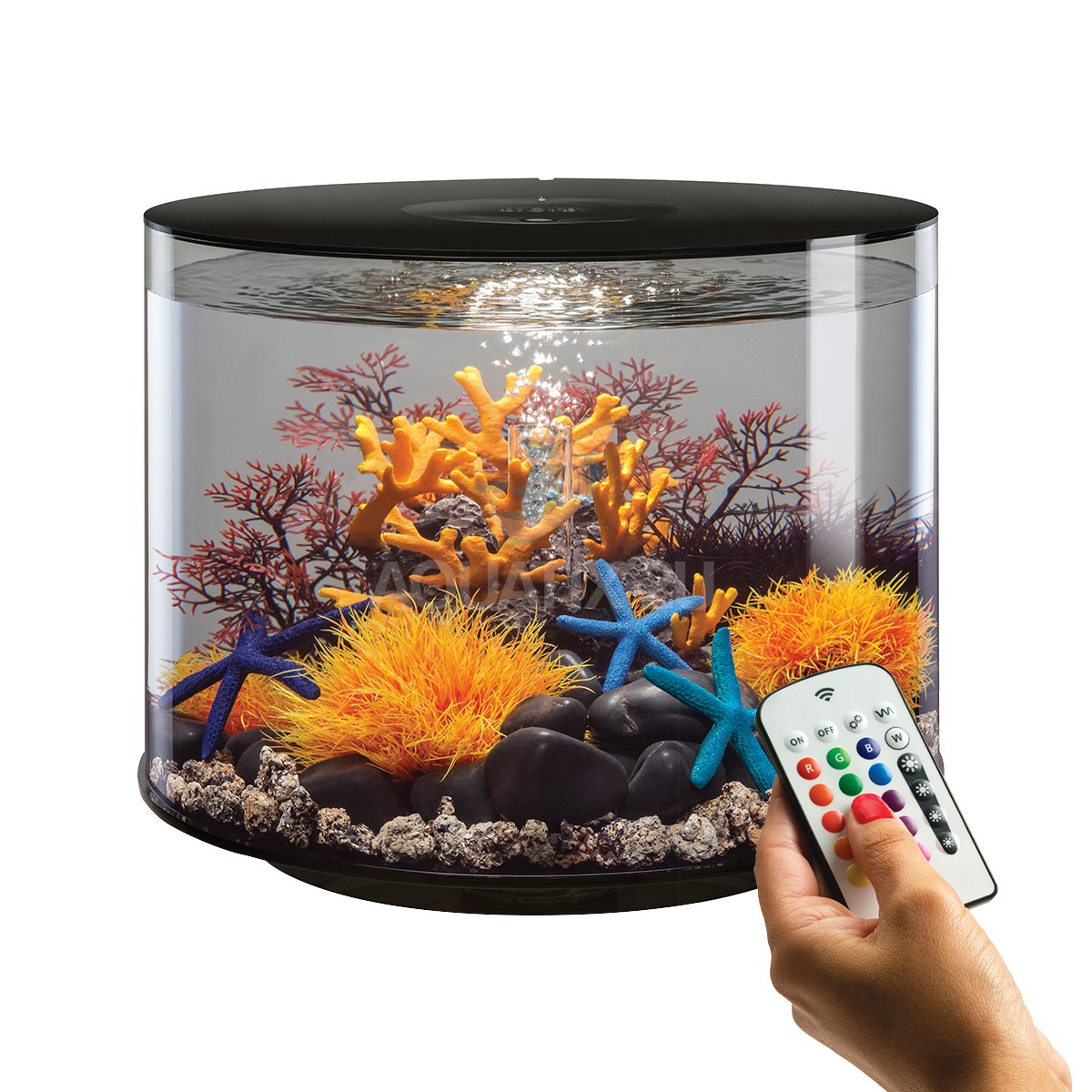 biorb tube 35l schwarz aquarium mit mcr led beleuchtung g nstig kaufen. Black Bedroom Furniture Sets. Home Design Ideas