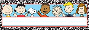 """Eureka Peanuts Composition Tented Name Plates, includes 36 tented name plates, measuring 9.62"""" x 6.5"""""""