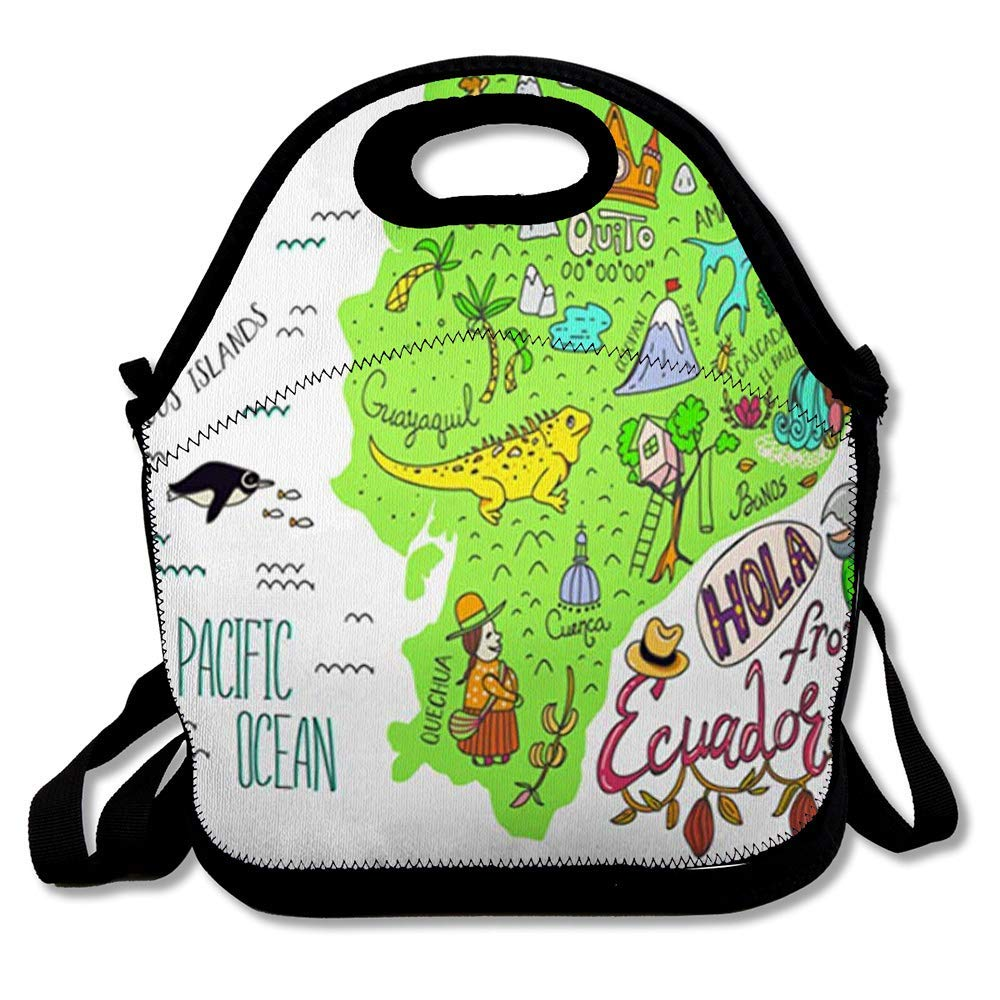 Lunch Bag Tote Boxes Bags Insulated LunchBags Text Pink Map Ecuador Galapagos Islands Iguana Adventure Atlas Bird Cartography Lunch Box for Office Work School Student: Amazon.es: Hogar