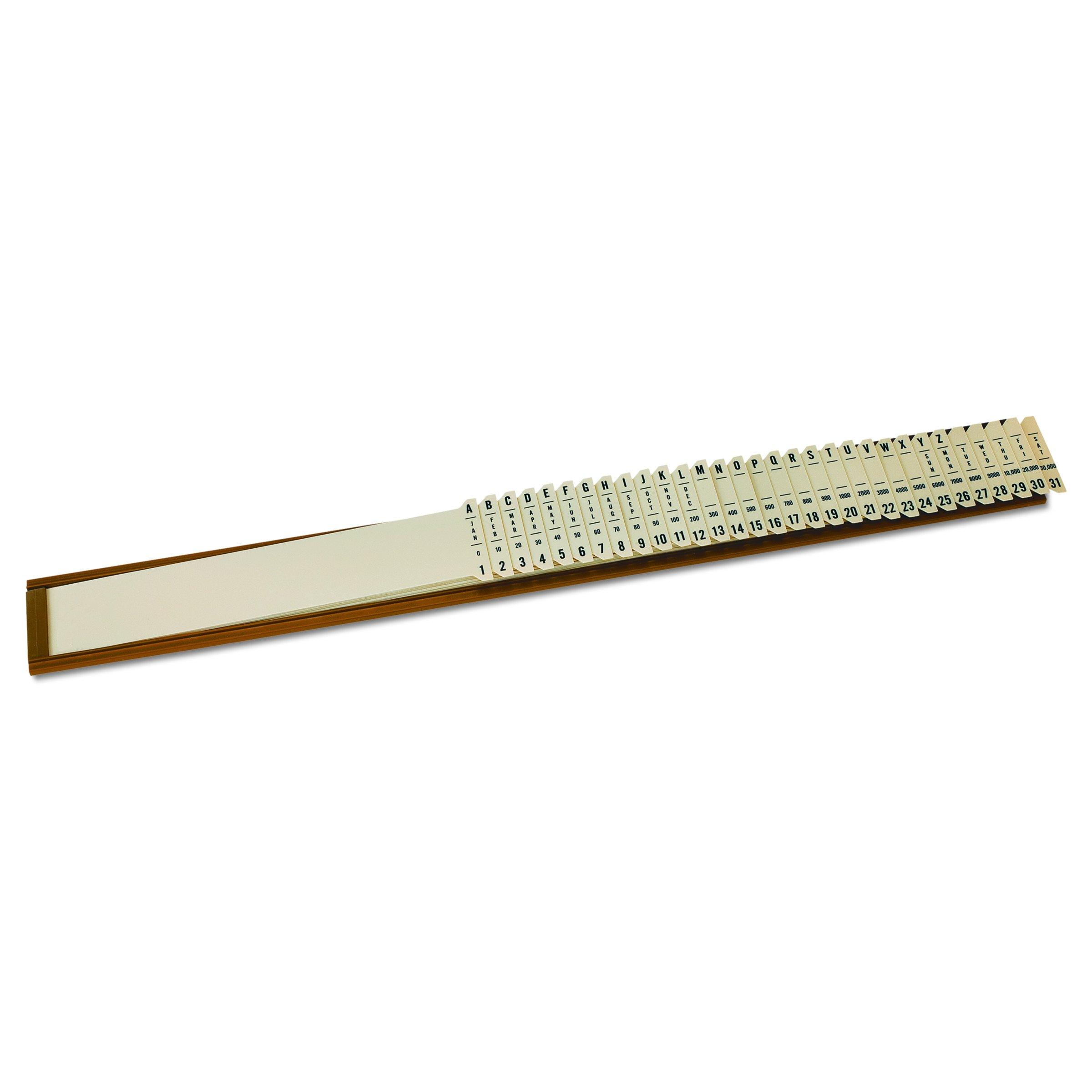 Pendaflex Plastic Sort-All Sorter, 2-1/2'' x 23-1/4'', Each (40652)