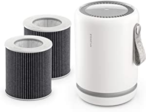 Molekule Mini and PECO Filter Bundle