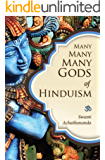 Many Many Many Gods of Hinduism: Culture, Concepts, Controversies