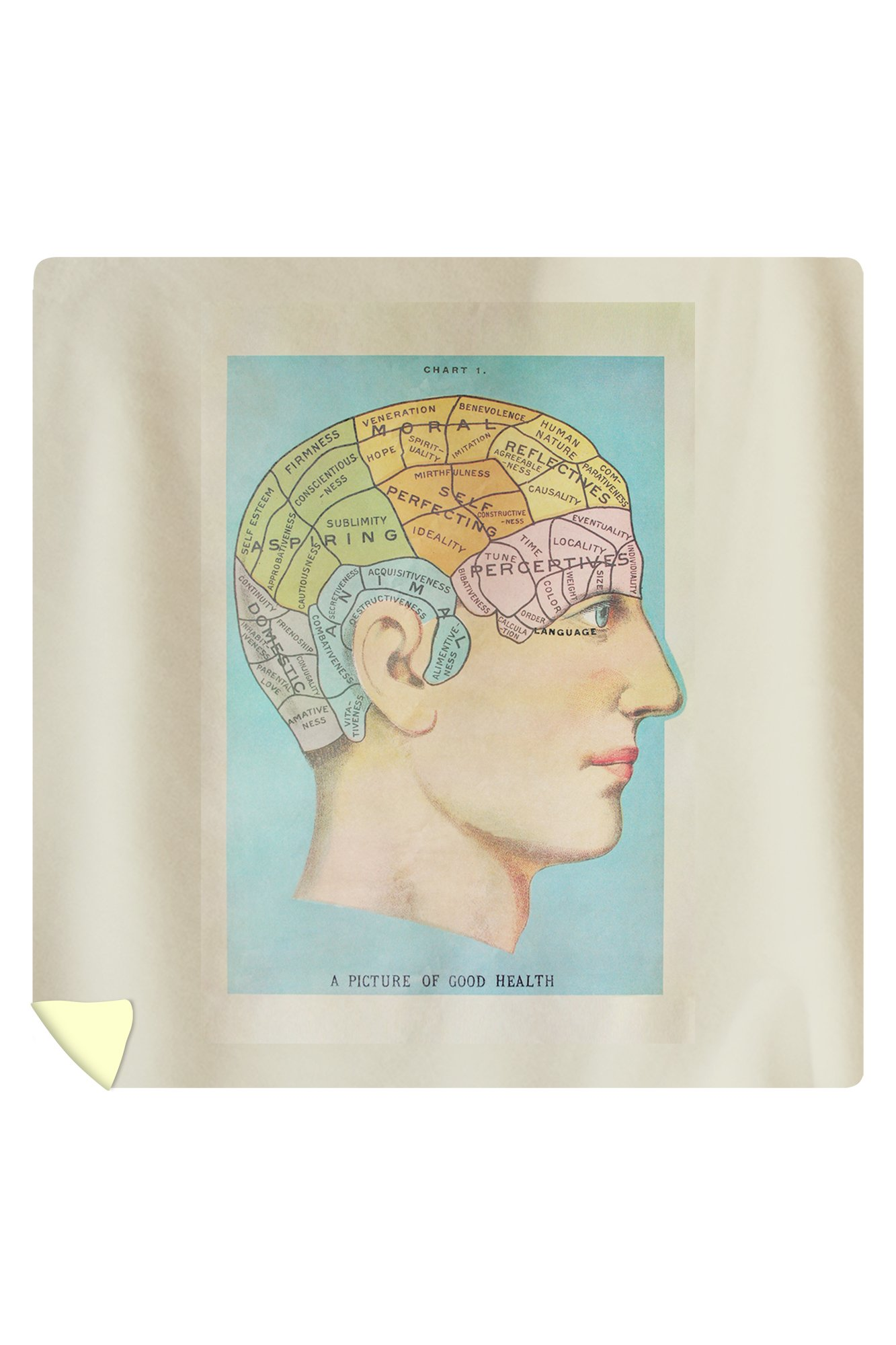 A Picture of Good Health - Vintage Cognitive Science Lithograph (88x88 Queen Microfiber Duvet Cover)