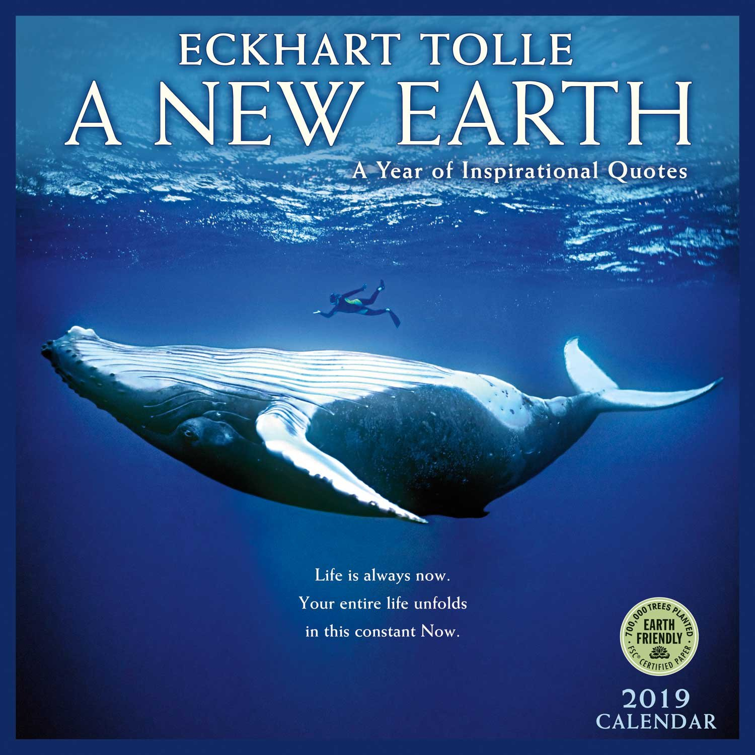 a new earth 2019 wall calendar a year of inspirational quotes