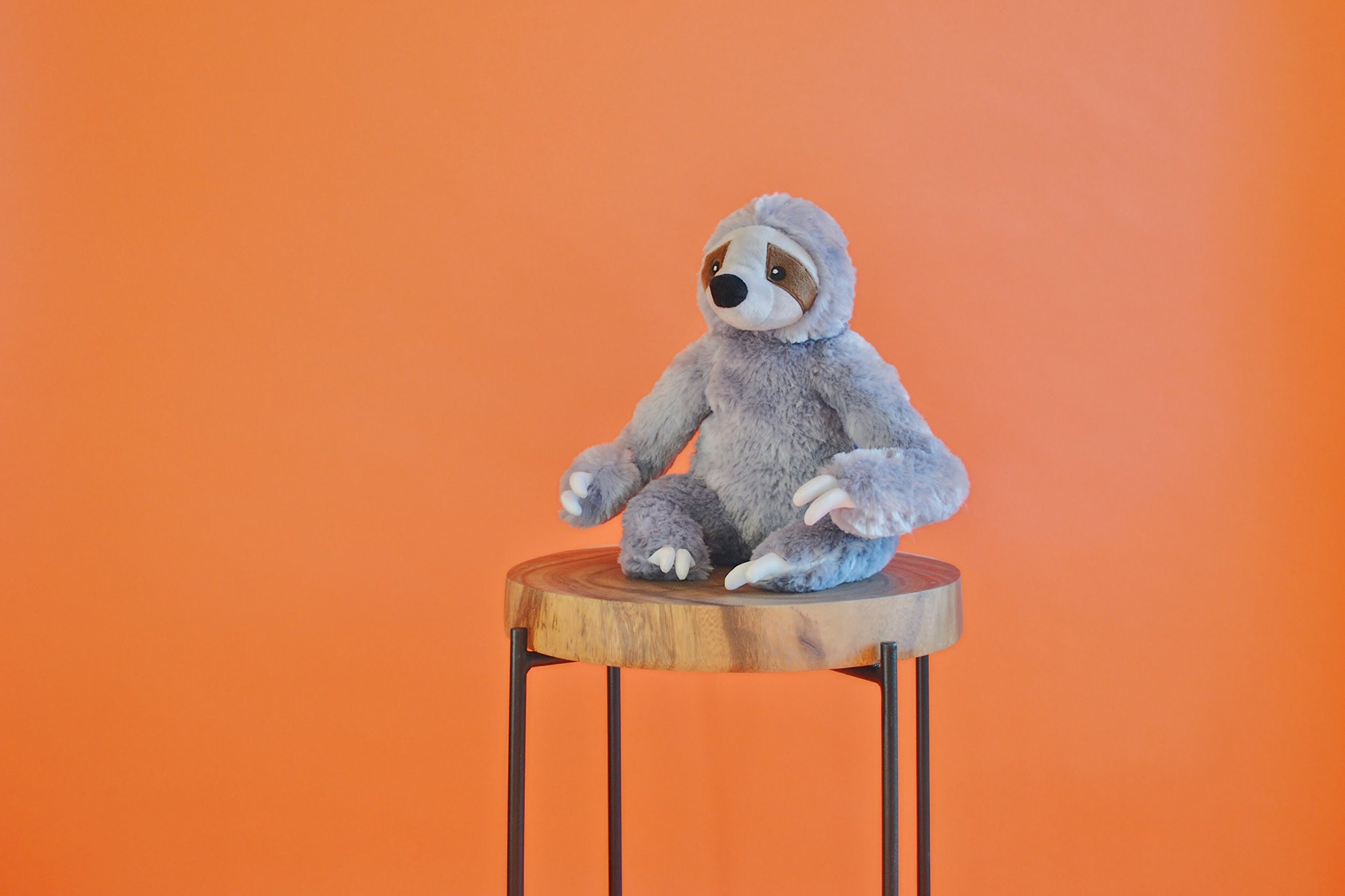 Stanley the Stinky Sloth, Farting Plush Dog Toy with Sound Insert by The Farting Dog Company (Image #4)